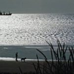 У берегов Камчатки объявили штормовое предупреждение
