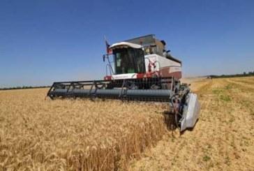 МЭР: Турция изменила правила ввоза сельхозпродуктов в одностороннем порядке