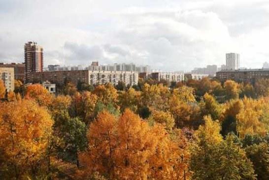 Теплая и ветреная погода ожидается в Москве во вторник