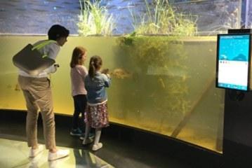 В Лозанне открылся крупнейший в Европе аквариум с пресной водой