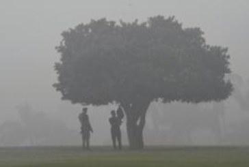Густой смог над Дели: жители в панике
