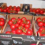 В Россию прибыла первая фура с турецкими помидорами