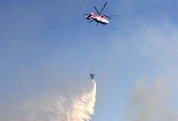 Российские ученые разработали эффективный способ тушения лесных пожаров