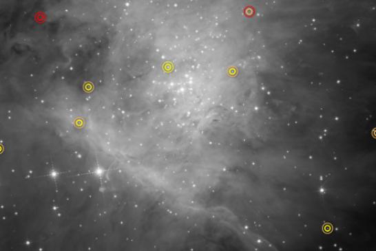 «Хаббл» нашел в созвездии Ориона целый выводок «темнейших звезд»