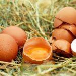 В России утвердили ГОСТ на главный ингредиент салата оливье