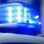 Полицейские обнаружили под Киевом тело правозащитницы Ирины Ноздровской