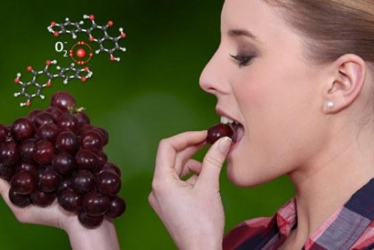 Лук или вино? Что предпочтет истинный ценитель витаминов