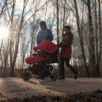 Более половины россиян считают недостаточными демографические меры властей