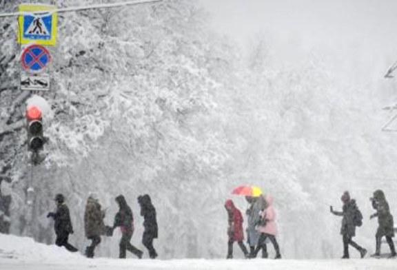 Роструд назвал плохую погоду уважительной причиной опоздания