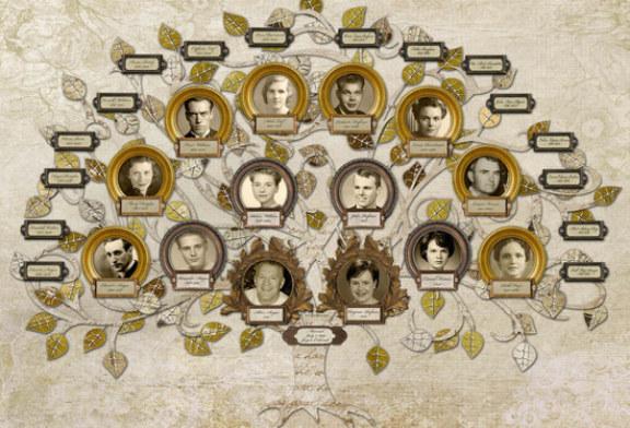 Семья из 13 миллионов человек помогла генетикам раскрыть секреты долголетия