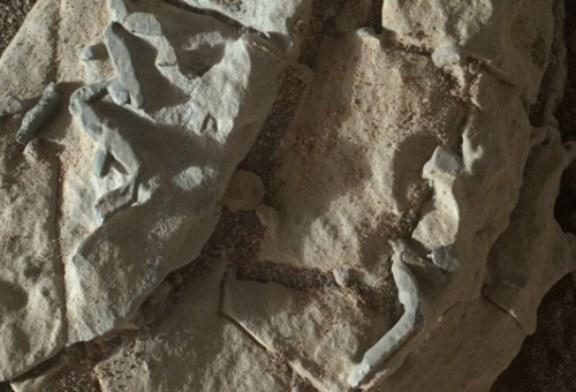Ученые НАСА усомнились в открытии следов бактерий на Марсе