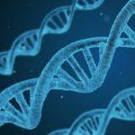Генетики разобрались, является ли способность сочувствовать «врожденной»