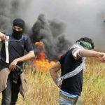 Москва осудила неизбирательное применение силы в секторе Газа