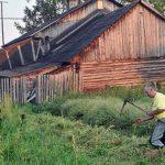 Танкиста осудили за покос травы