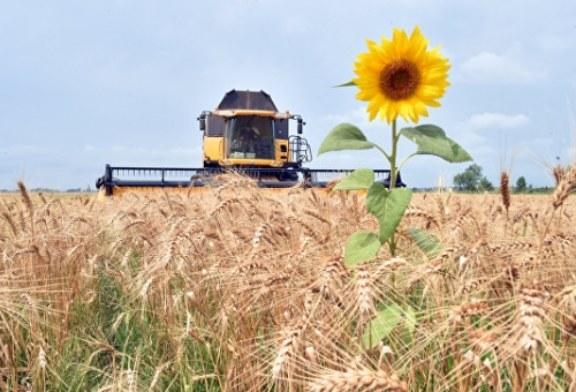 Эксперт рассказал, как и когда роботы-фермеры заменят человека