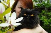 «Бахыт-Компот» посвятил философскую оду убитому коту Скрипалей