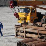 На высадку деревьев у трассы «Таврида» в Крыму уже выделили 240 млн рублей