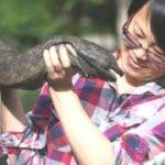 Исполинская саламандра — на грани полного вымирания