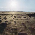 Извержение вулкана покрыло пляжи Гавайев загадочными золотыми «волосами»