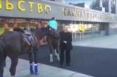 Камчатский депутат получил повестку в суд из-за приезда на работу на коне