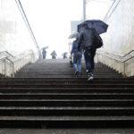 Роман Вильфанд об отставке: «Я слишком долго возглавлял Гидрометцентр РФ»