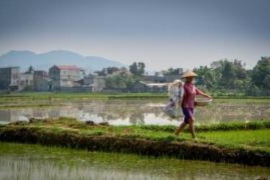 Супербактерии помогут накормить растущее население Земли