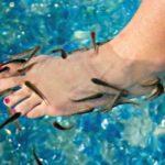 Педикюр при помощи рыбок вызвал отслоение ногтей