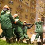 Больше 9 тыс. деревьев высадят в Москве осенью