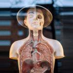 Многие распространенные лекарства могут вызывать тяжелое поражение легких