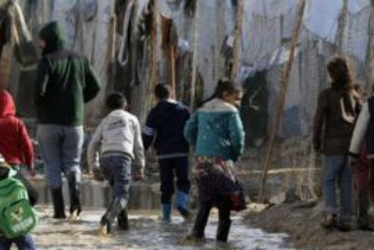 Изменение климата — причина «арабской весны», войн и массовой миграции