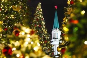 Акция по сбору и утилизации елок стартует в Москве