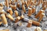 Легкие сигареты вызывают рак легкого и убивают так же эффективно, как обычные