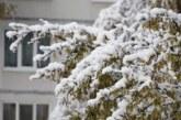 Первый снег выпал в Приамурье