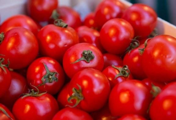 Минсельхоз подготовил документы для начала поставок томатов из Турции