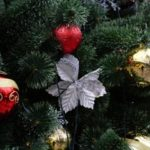 Главную новогоднюю елку страны срубят 15 декабря
