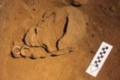 Археологи нашли в Индонезии останки древнейшего рыболова на Земле