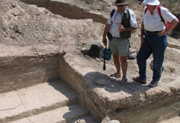 Палеонтологи нашли новые подтверждения теории африканских «садов Эдема»