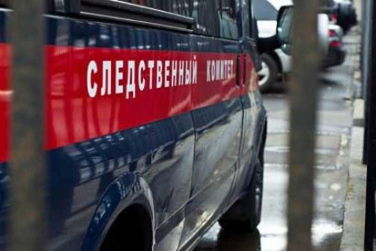 В Новгородской области ребенка убило спиленным деревом