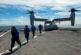 «Американский корабль под Керчью русские таранить побоятся»