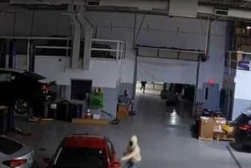 Грабители проникли в дилерский центр KIA и угнали машины клиентов (видео)