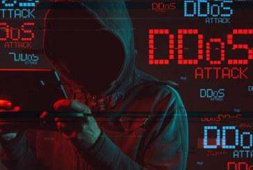 DDoS-GUARD — Уберите эту заразу из своей сети?